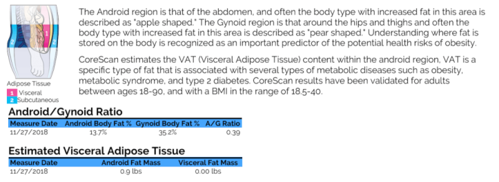 DexaScan visceral fat information