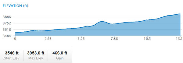 Zion Half Marathon elevation profile