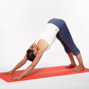 Yoga Downward Dog pose