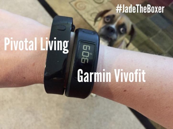 pivotal-living-garmin-vivofit.jpg