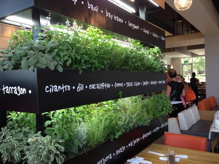 lyfe-kitchen-herbs.jpg